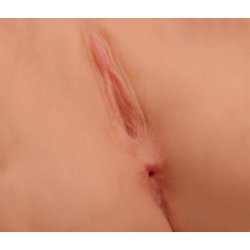 Jesse Jane's Missionary Pussy & Ass 3 Product Image