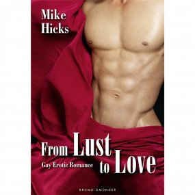 From Lust to Love: Gay Erotic Romance 1 Product Image