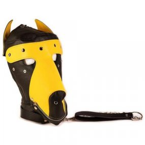 Basic Puppy Play Kit - Black & Yellow 2 Product Image