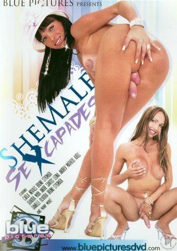 Shemale Sexcapades Image