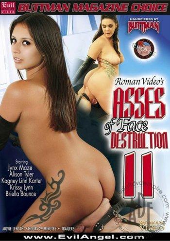 Asses Of Face Destruction Vol. 11 Image