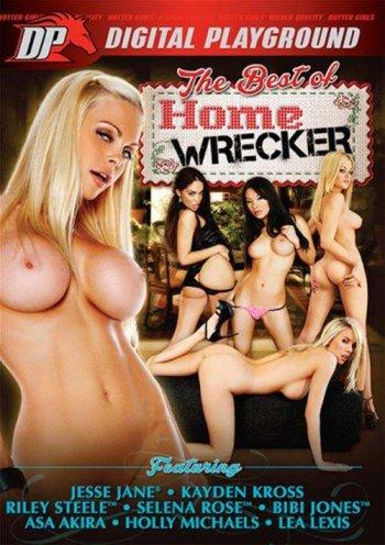 Best Of Homewrecker, The Image