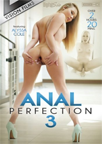 Anal Perfection 3 Image