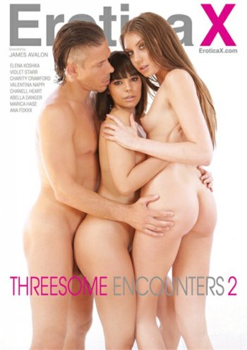 Threesome Encounters 2 Image