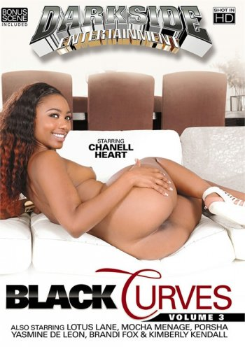 Black Curves Vol. 3 Image