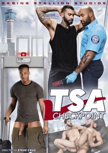 TSA Checkpoint Image