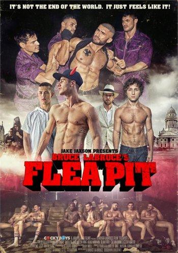 Flea Pit Image