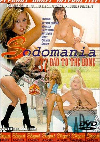 Sodomania 37: Bad to the Bone Image