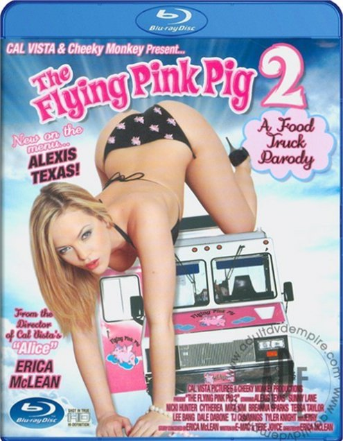 the flying pink pig 2
