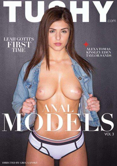 Anal Models Vol. 3