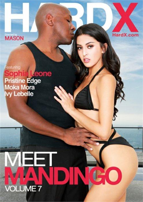 Meet Mandingo Vol. 7