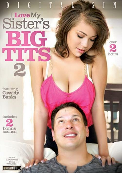 I Love My Sister's Big Tits 2 Boxcover