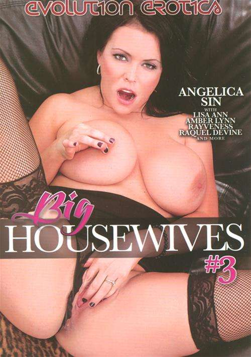 Big Housewives #3 Boxcover