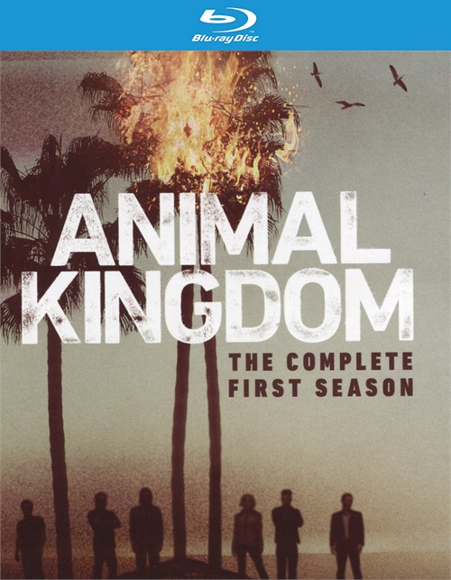 Animal Kingdom: The Complete First Season (Blu-ray + UltraViolet)