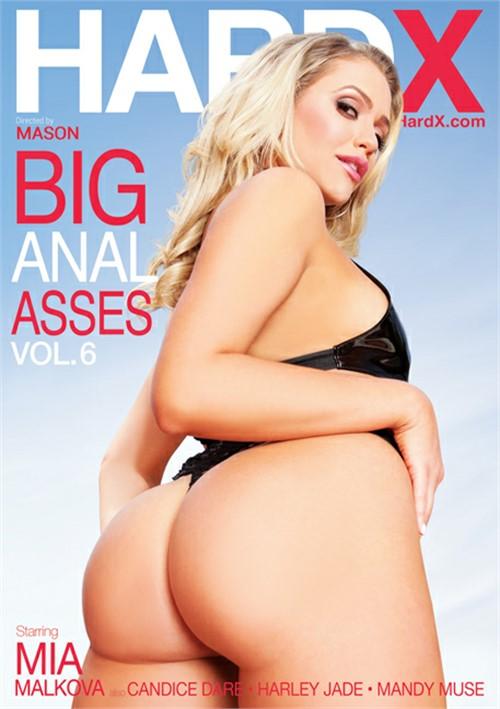 Big Anal Asses Vol. 6 image