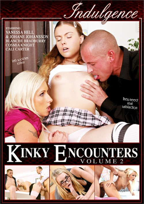 Kinky Encounters Vol. 2 Boxcover