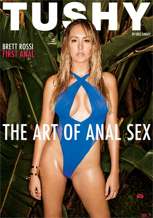 Art Of Anal Sex 9, The Image