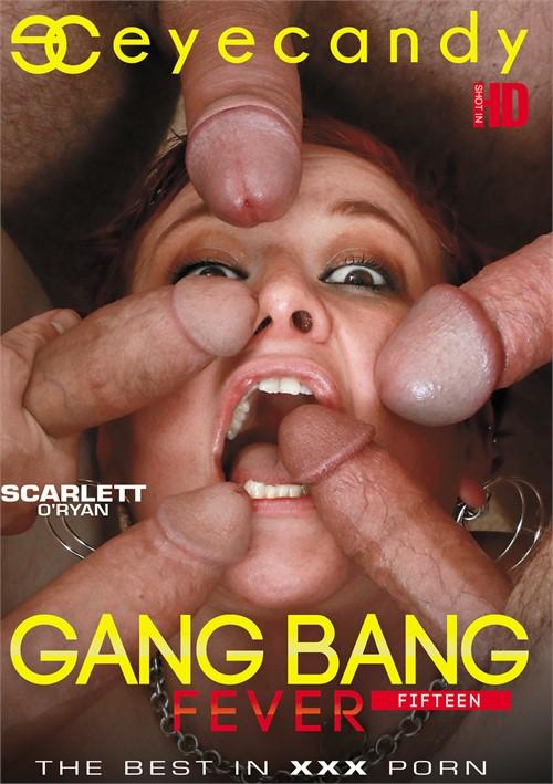 Gang Bang Fever 15 Boxcover