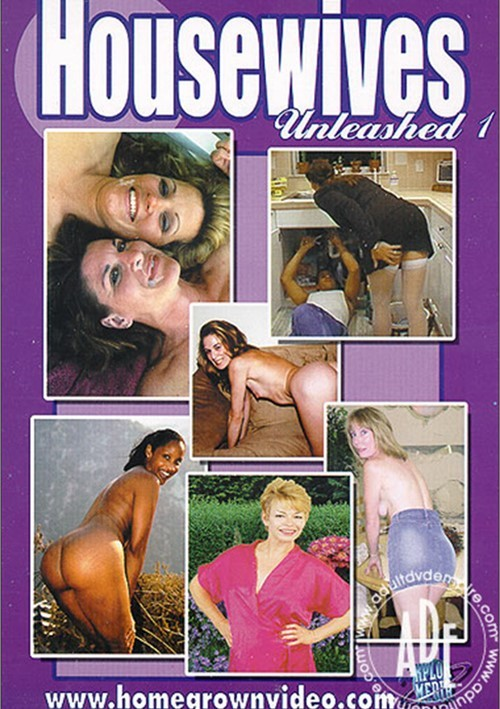 Housewives Unleashed 1 Boxcover