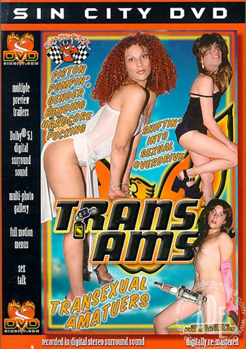 Trans Ams Boxcover