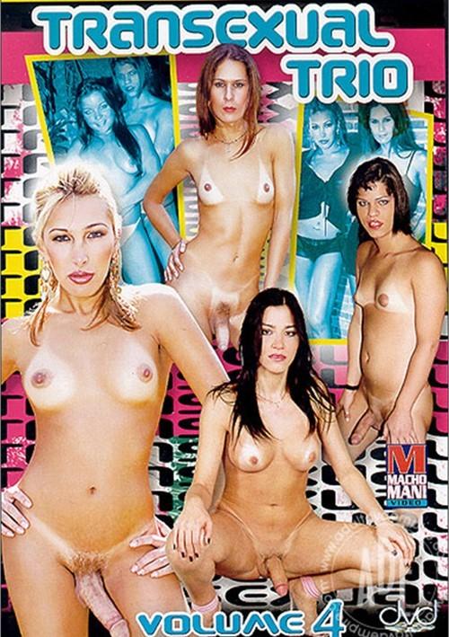 Transexual Trio Vol. 4 Boxcover