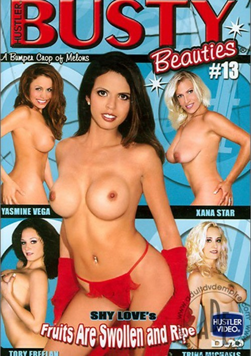 Busty Beauties #13 Boxcover