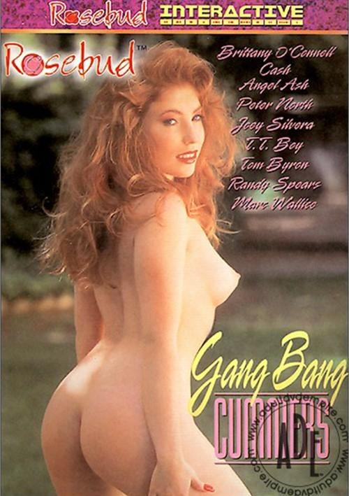 Gang Bang Cummers Boxcover