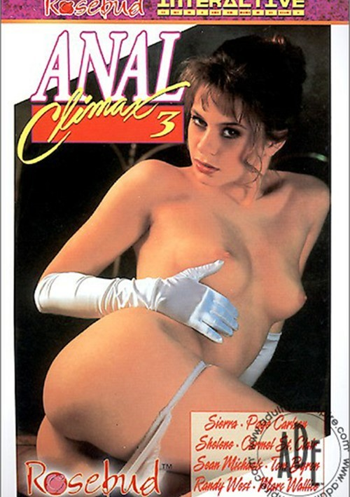 Anal Climax 3 Boxcover