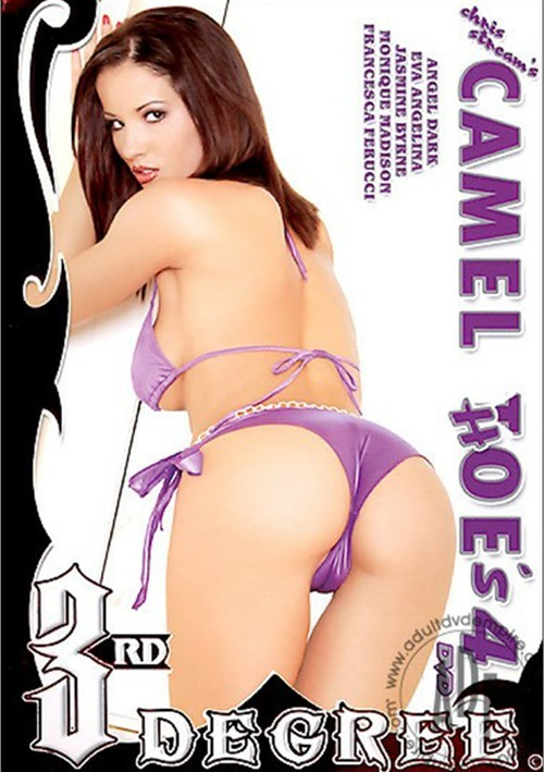 Camel Hoe's 4 Boxcover
