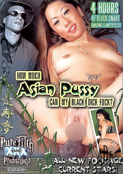 How Much Asian Pussy Can My Black Dick Fuck? Boxcover