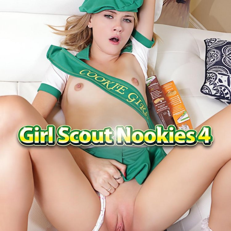 Girl Scout Nookies 4 Image