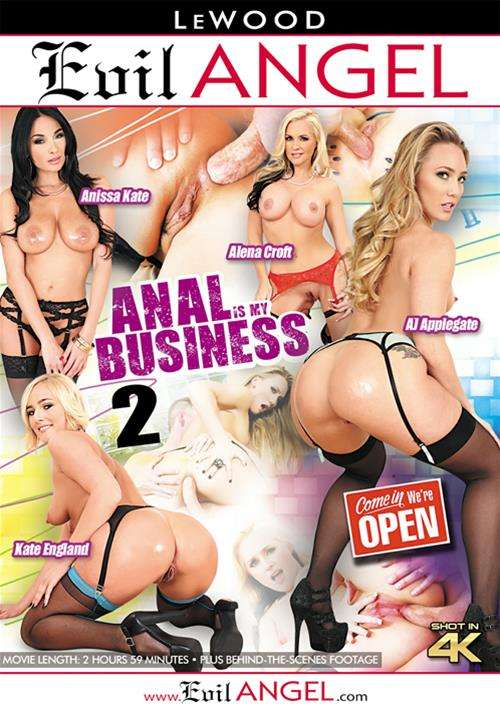 Anal Is My Business 2 Boxcover