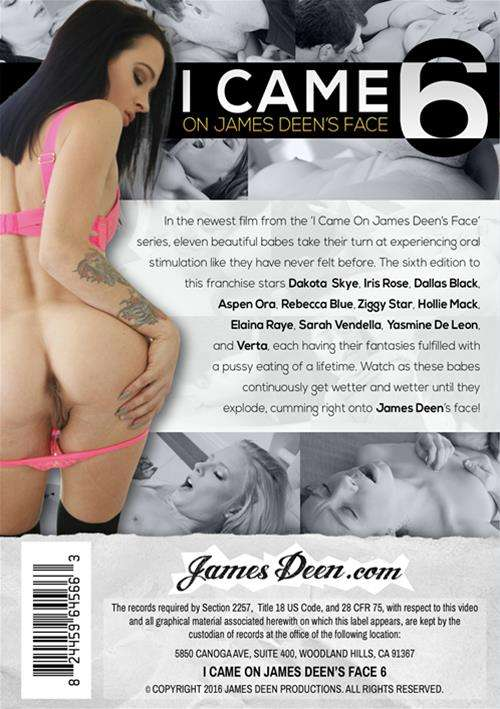 I Came On James Deen's Face 6 Boxcover