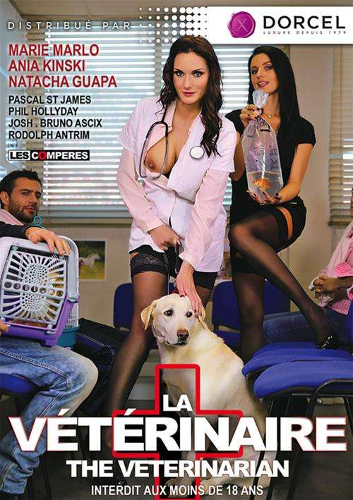 Veterinarian, The (French) Boxcover