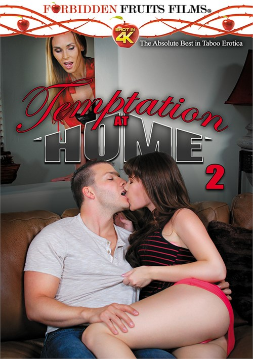 Temptation At Home Vol. 2 Boxcover