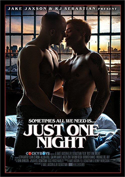 Just One Night Boxcover