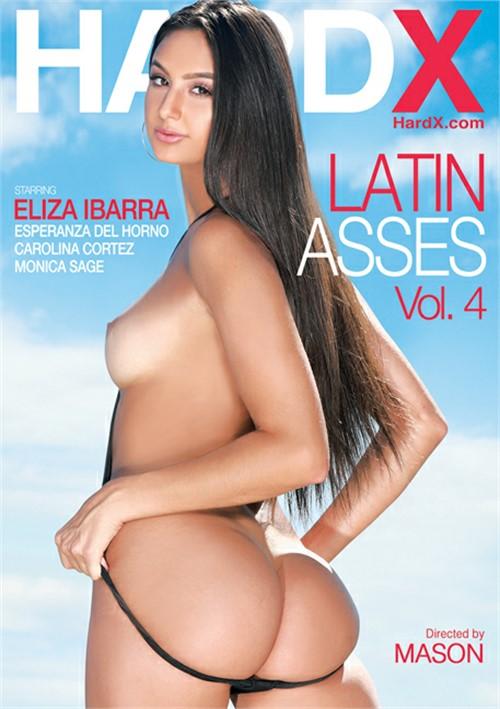 Latin Asses Vol. 4