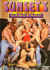 Sunset's Anal and D.P. GangBang Boxcover