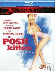 Posh Kitten