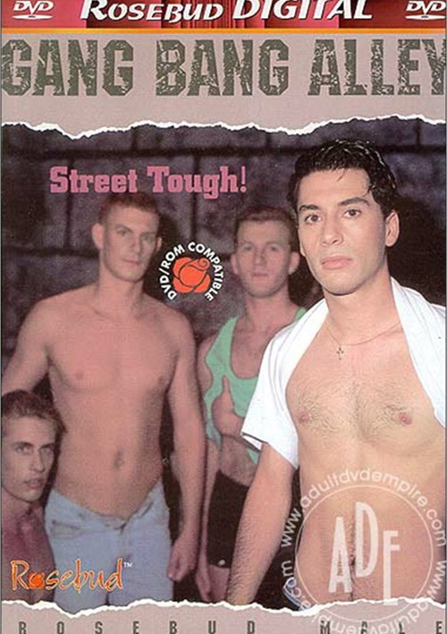 Gang Bang Alley Boxcover