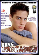 Boys Fantasies Porn Movie