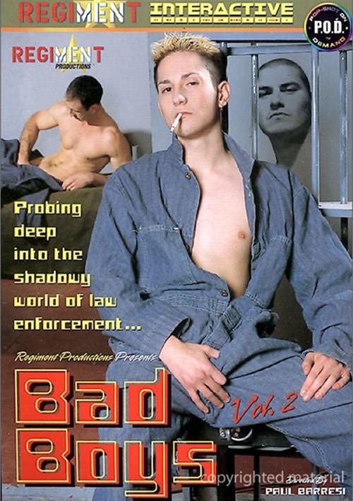 Bad Boys Vol. 2 Boxcover