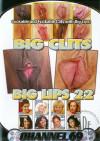 Big Clits Big Lips 22 Boxcover