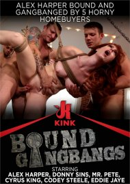 Alex Harper Bound and Gangbanged by 5 Horny Homebuyers image