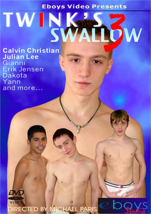 Twink's Swallow 3 Boxcover