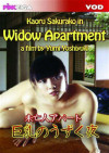 Widow Apartment Boxcover