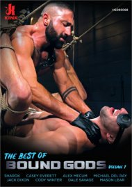 Best of Bound Gods Vol. 1, The image