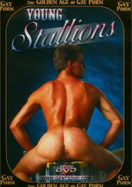 Golden Age of Gay Porn, The: Young Stallions Porn Video
