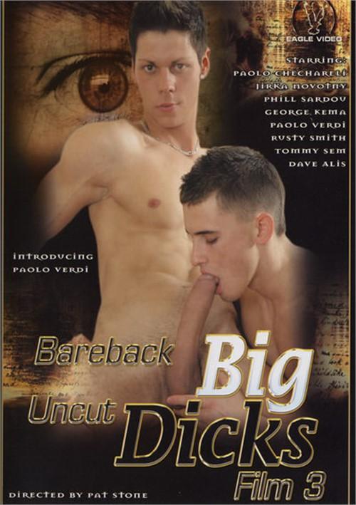 Bareback Big Uncut Dicks 3 Boxcover