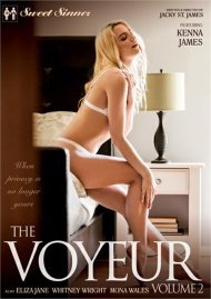 Voyeur Vol. 2, The Porn Video